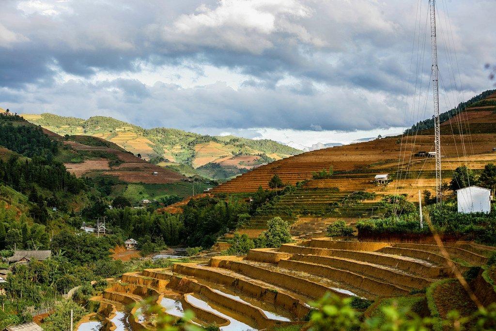 Mù Cang Chai, rizières en terrasse - Vietnam