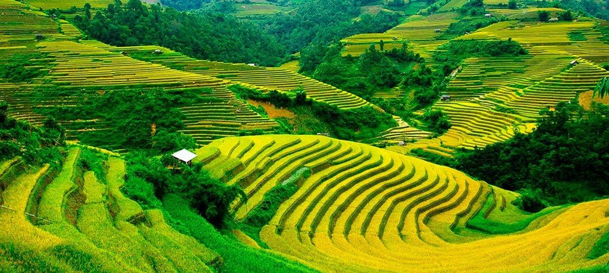 Vietnam-tangka-sapa-nord-vietnam