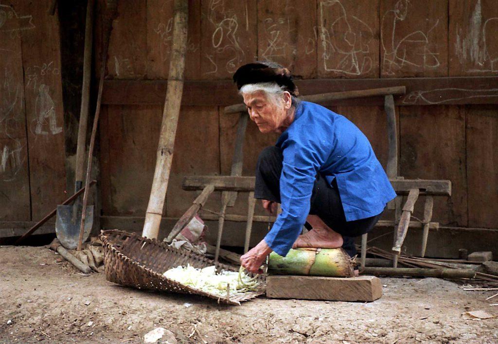 Femme ethnie Tay, Ba Be, Vietnam